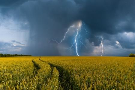 CIAG « Gestion du risque en agriculture »