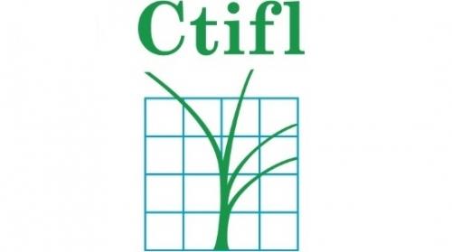 Le CTIFL recrute
