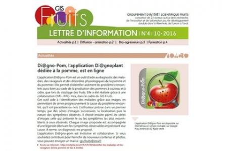 Le GIS Fruits publie sa lettre d'information n°4
