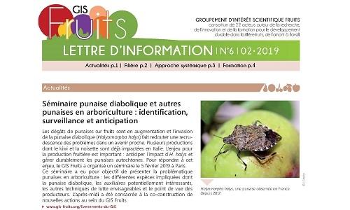 Le GIS Fruits publie sa lettre d'information n°6