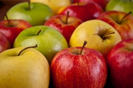 Le rapport « Evaluation du matériel végétal fruitier » est publié