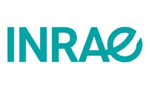 Offre d'emploi à l'Unité Expérimentale Arboricole d'INRAE Nouvelle Aquitaine Bordeaux en CDD 6 mois