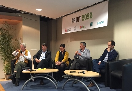 Les productions fruitières face aux changements climatiques : anticiper pour agir demain